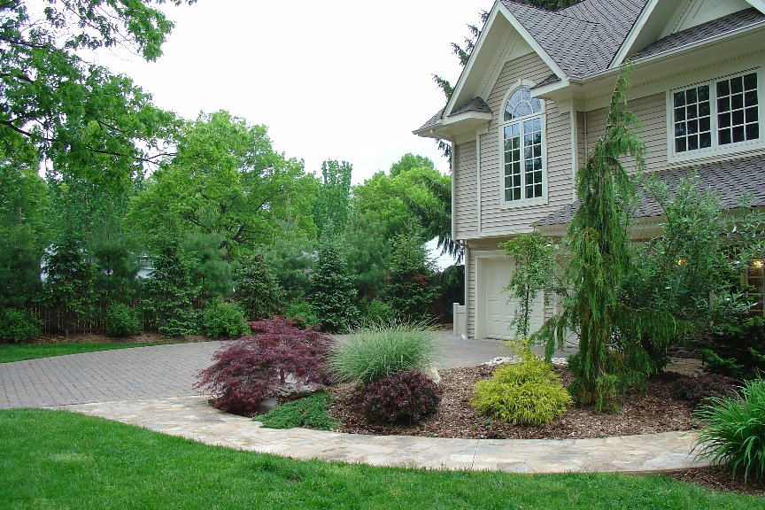Top 28 Shrubs For Front Of House Pictures Landscaping